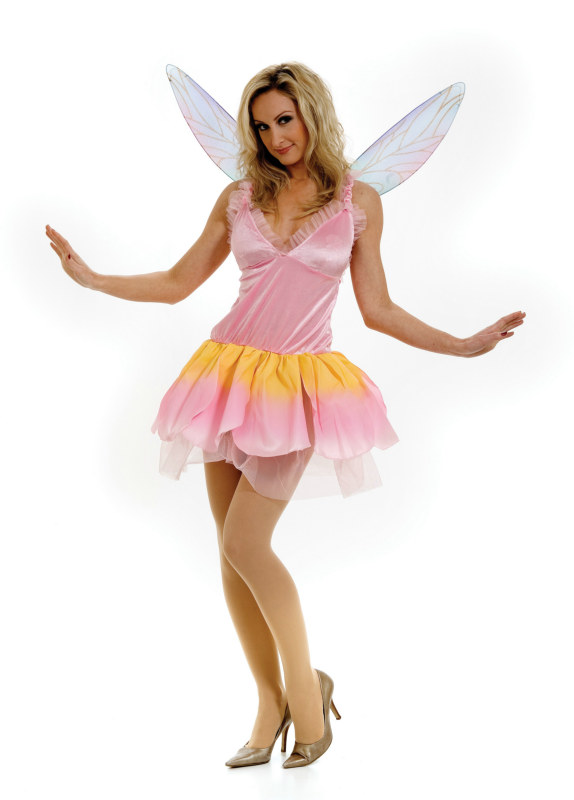 Glitter Pixie Wings Adult