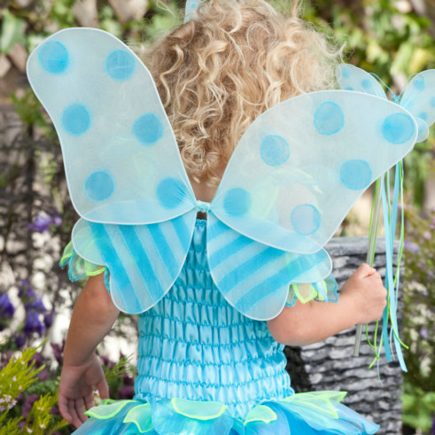 Butterfly Fairy Child Wings