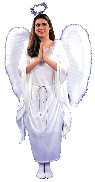Angel Dress Adult Costume