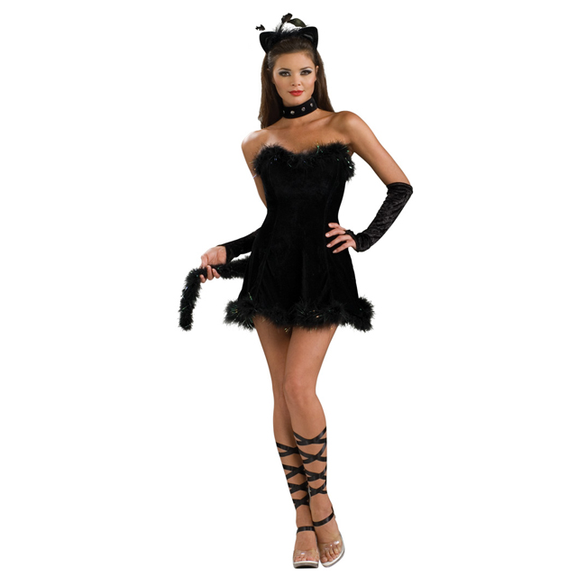 Kissable Kitty Cat Sexy Costume