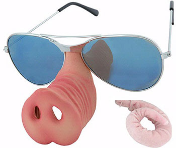Donut McPiggly Sunglasses and Tail