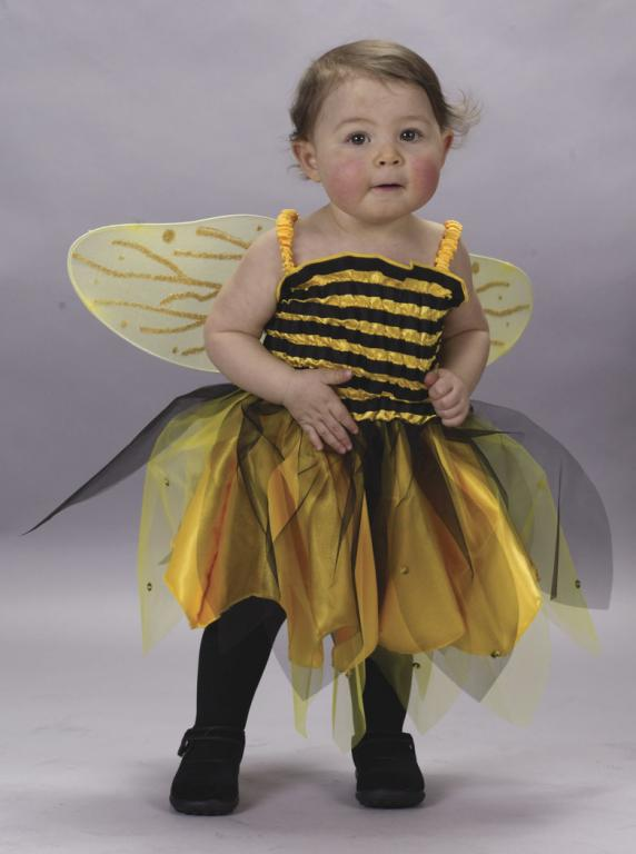 Cute Little Queen Bee Infant Costume