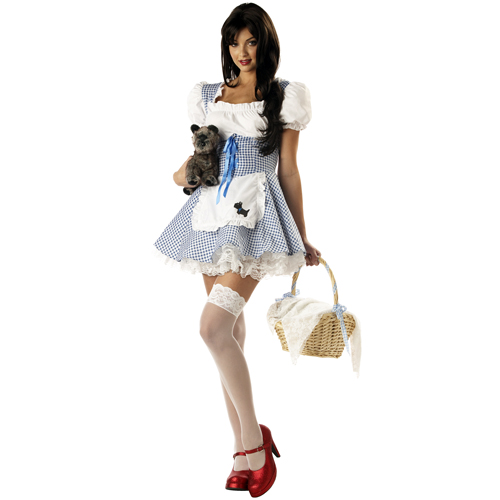 Sexy Storybook Sweetheart Dorothy Costume
