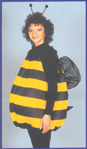 Bee Adult Costume