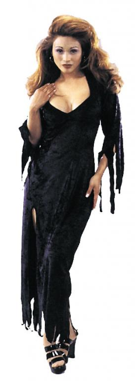 Endora Adult Costume