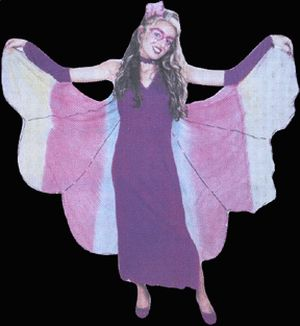 Butterfly Adult Costume