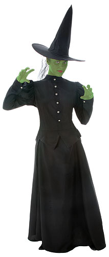 Deluxe Plus Size Wicked Witch Costume