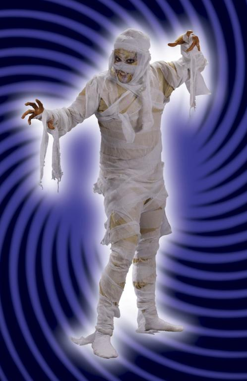 Mummy Man Adult Costume