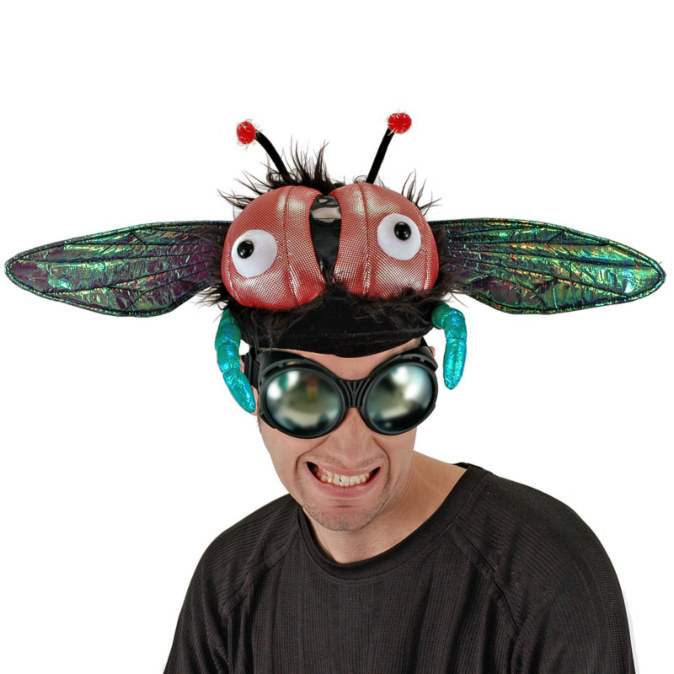 Buzzy Fly Hat