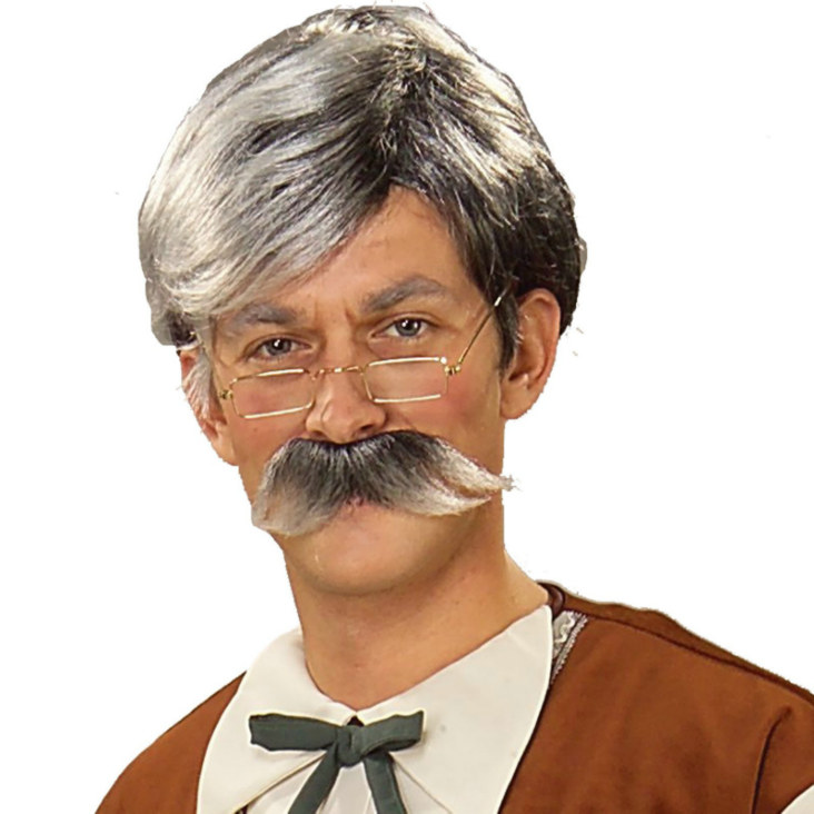 Geppetto Wig and Moustache - Grey