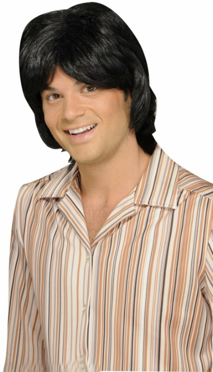 70's Teen Heart Throb Adult Wig