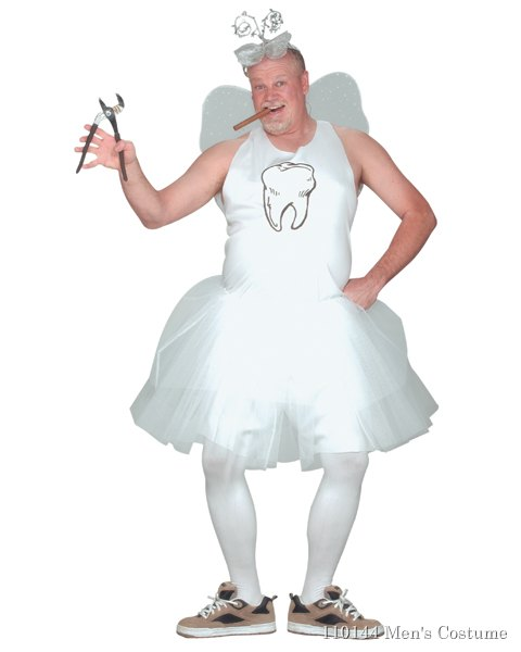 Tooth Fairy Costume For Adult