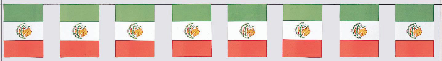 8' Mexican Flag Paper Banner