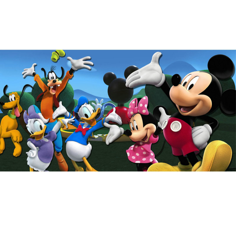 Mickey / Minnie Mouse - Party Backdrop