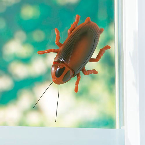 Window Walking Cockroach Toy