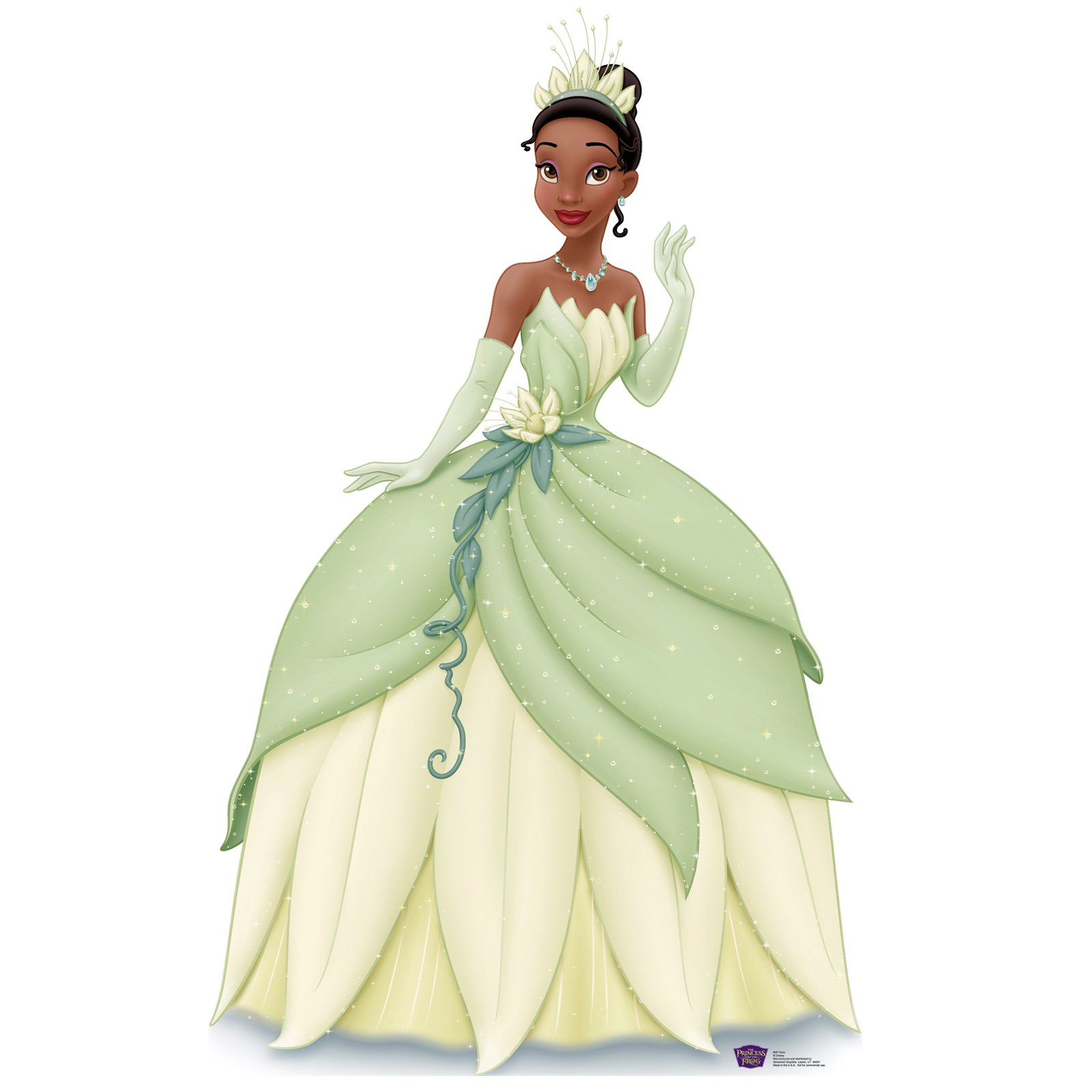 Princess and the Frog Standup