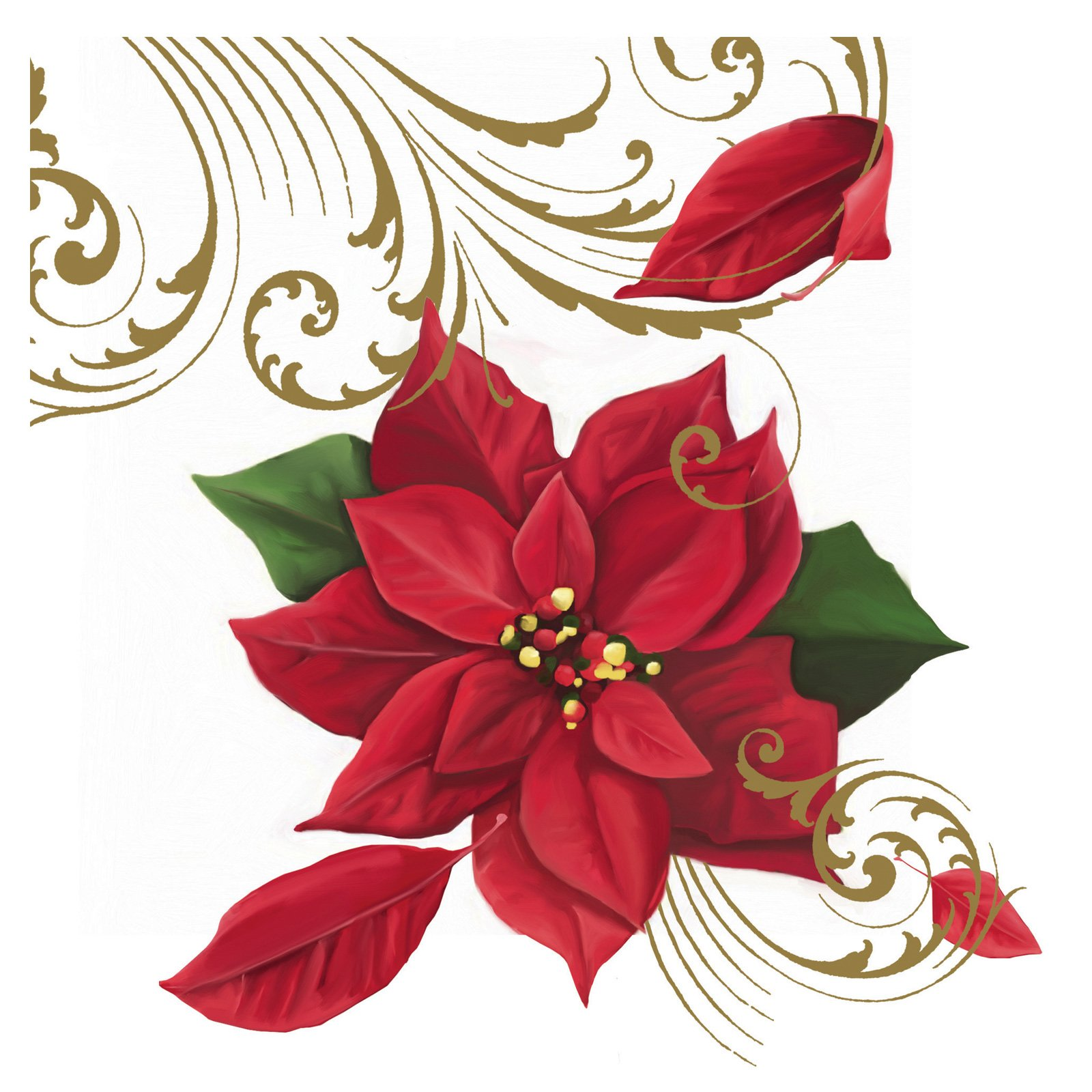 Poinsettia Breeze Lunch Napkins (18 count)
