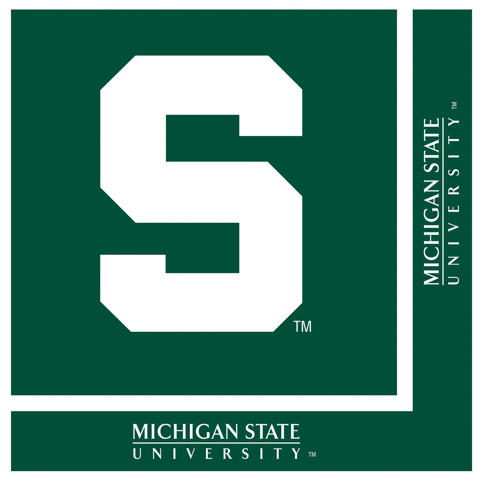 Michigan State Spartans - Lunch Napkins (20 count)