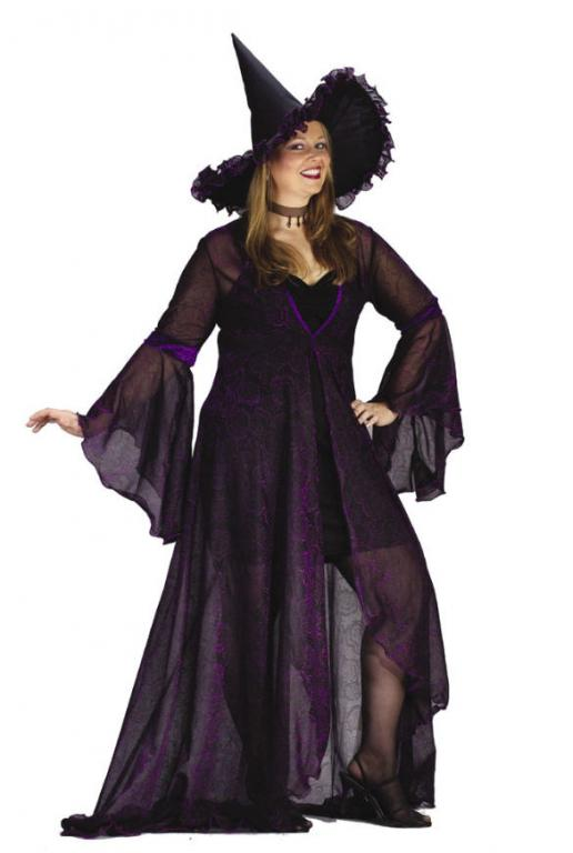 Shimmering Rose Witch Plus Size Adult Costume