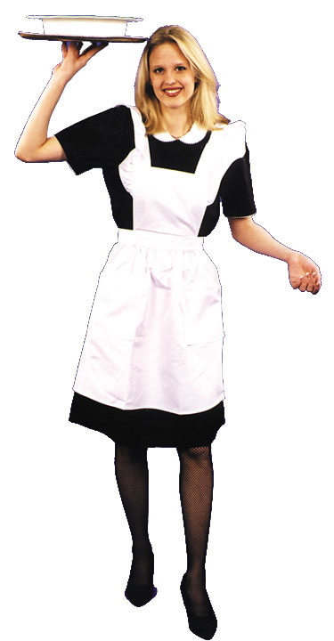 Diner Car Waitress Plus Size Adult Costume