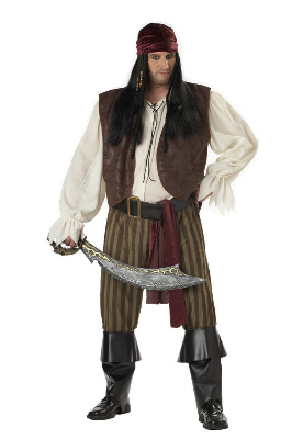 Rogue Pirate Plus Size Adult Costume