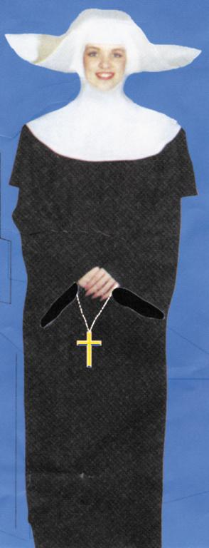 Flying Nun Adult Costume