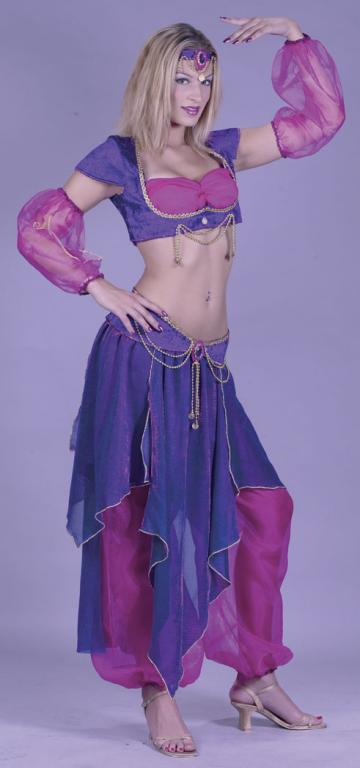 Belly Dancer Adult Costume