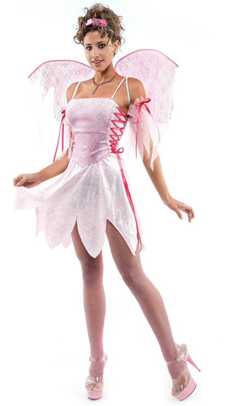 Blush Fairy Adult Costume