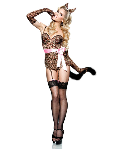 Sexy Kitten Kaboodle Womens Costume