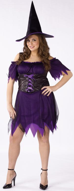 Dark Witch Plus Adult Costume