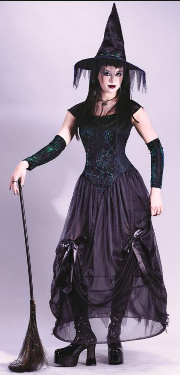 Bewitching Enchantress Adult Costume