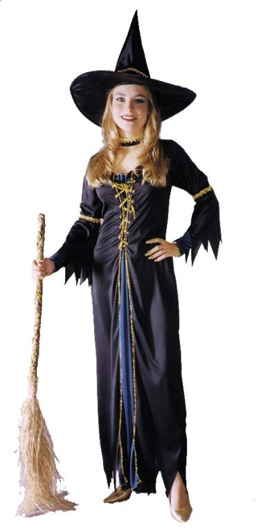 Renaissance Witch Adult Costume