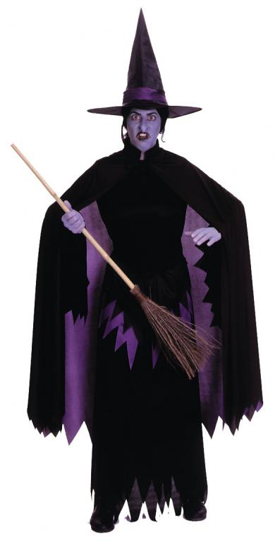 Wizard Of Oz Wicked Witch Of The West Adult Costume