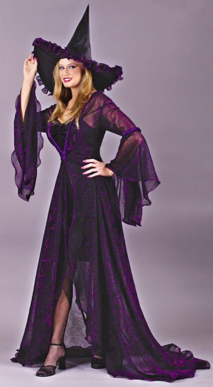 Shimmering Rose Witch Adult Costume