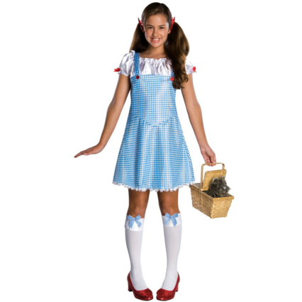 Wizard of Oz Dorothy Tween Costume